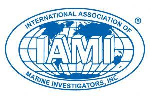 IAMI_Logo2